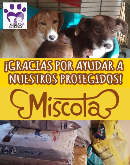 Donativo de Miscota.es
