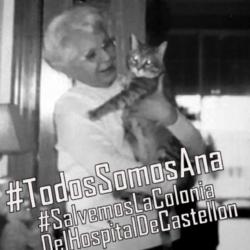 En recuerdo de Ana, la Dama de los Gatos
