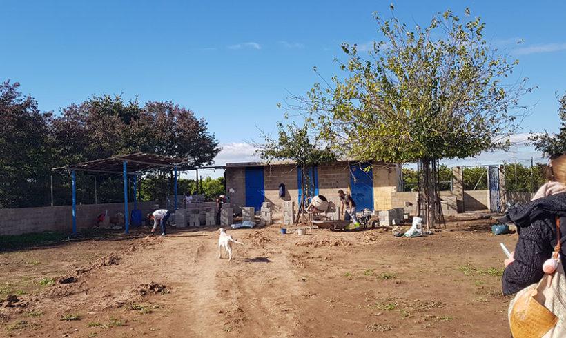 ¡Empezamos a construir nuestro refugio!