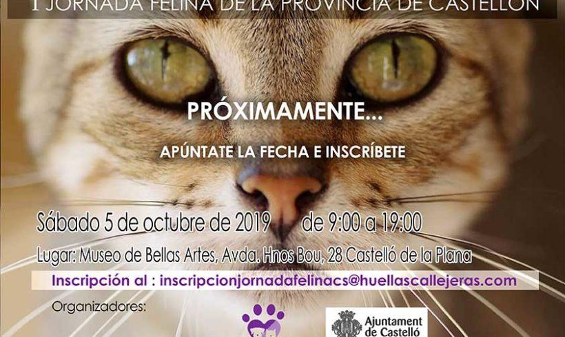 I Jornada Felina de Castellón